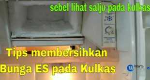 cara membersihkan freezer kulkas