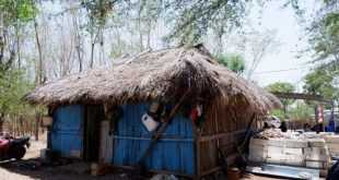 Intip Rumah Susanti peraih emas PON Papua